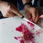 atelier rose 2