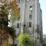 beaugency - tour César sonia baudu (2)