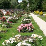Orleans jardin des plantes credit sonia baudu (2)
