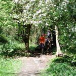 Parc Départemental des Mauves_F MARET ADRT (1)