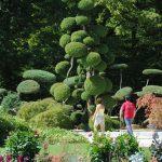 Séjour S7 J.Danet-Parc_Floral(2)