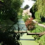 St_Benoît_sur_Loire_chemin_des_fossés_lavoir (2)